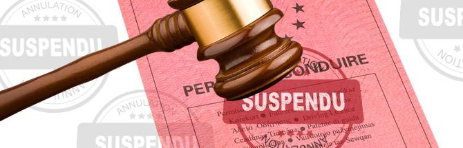 Retrait de permis et perte d'emploi : demander un permis blanc