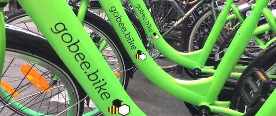 Contrairement aux Vélib, les vélos privés GoBeeBikes ne subissent quasiment pas de vandalisme