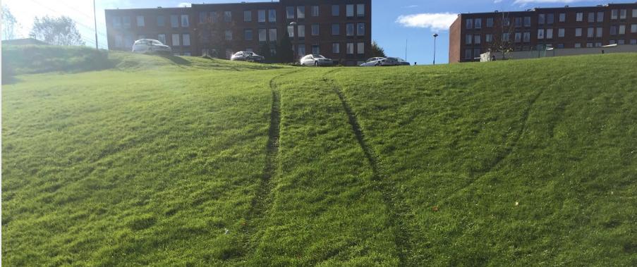 Norvège : des automobilistes passeraient par un parc pour éviter un péage urbain à 5 euros d'Oslo
