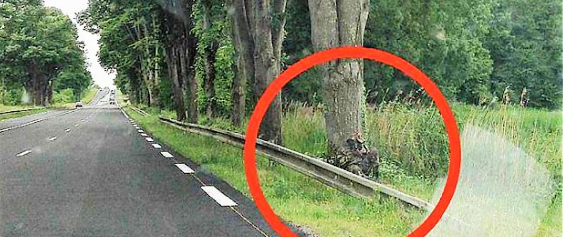 Anjou : quand le gendarme se fond dans le paysage pour contrôler la vitesse