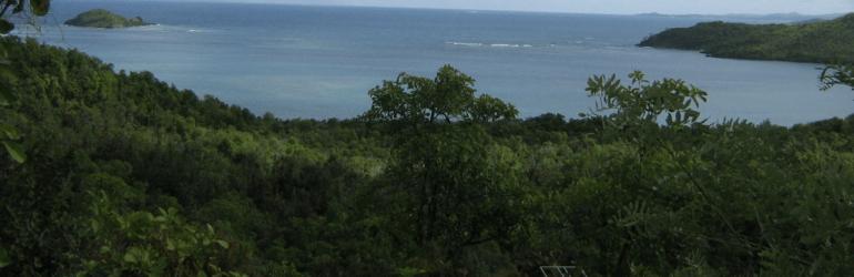 Martinique : pollution au niveau maximum suite à l'épisode de brume de sable